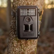 Bushnell-6MP-Trophy-Cam-Essential-Trail-Camera-with-Night-Vision-0-0