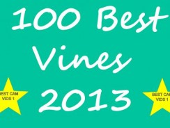 100 Best Vines Of 2013