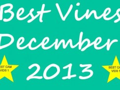 Best Vines Collection December 2013